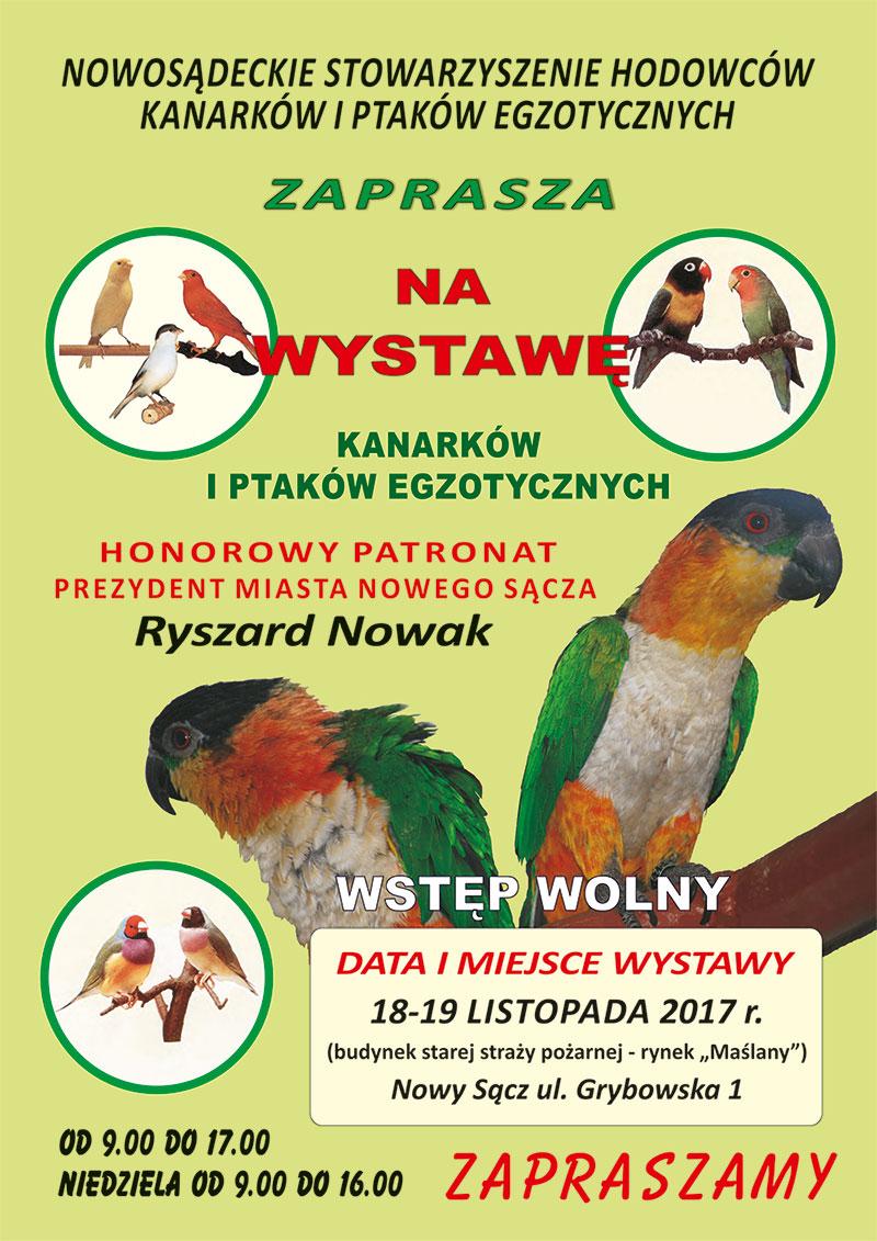Zapraszamy na wystawę Kanarków i Ptaków Egzotycznych Nowy Sącz