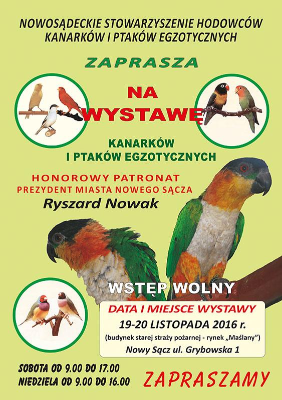 plak-Zbyszek-A3